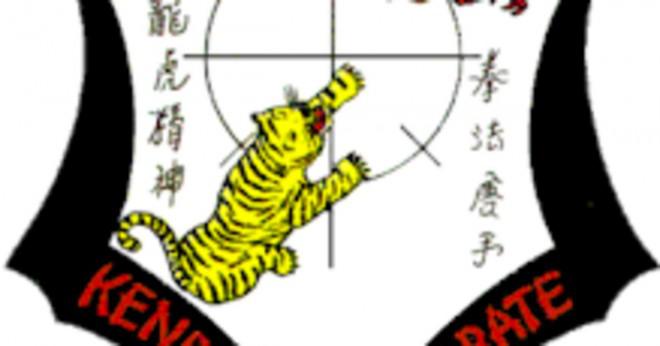 Vad kommer efter gult bälte i karate?