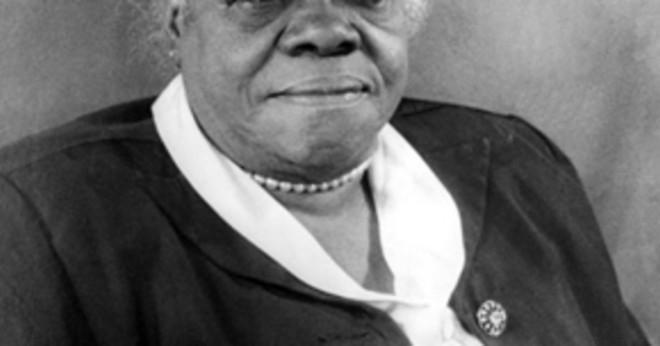 Hur var Rosa Parks vuxna liv?