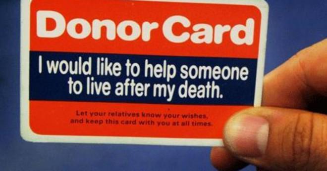 Vilka organ inte kan transplanteras?