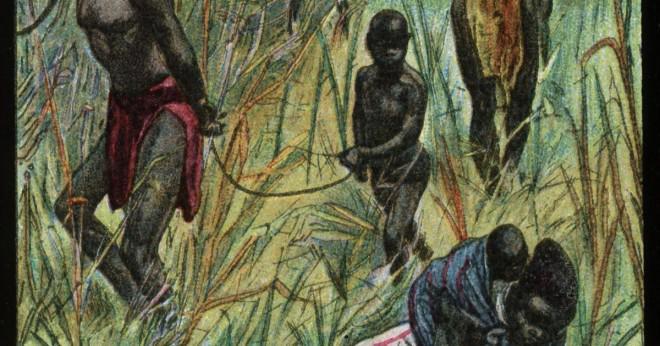 Hur har Nilen varit viktigt att de människor som bor vid sidan om?
