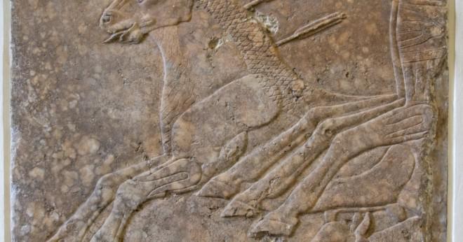 Geografiska särdrag av det assyriska riket?