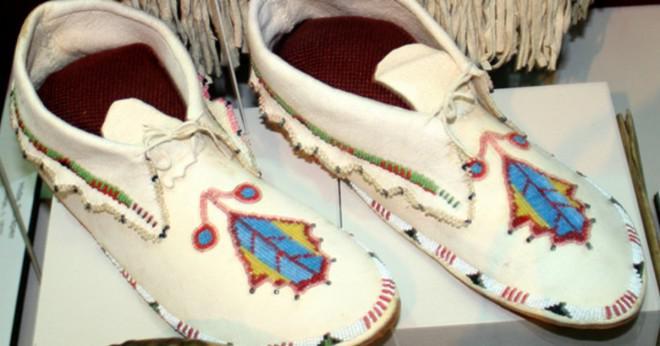 Vilka är några av de resurser som Sioux-indianerna använde och vad gjorde de använder dem för?