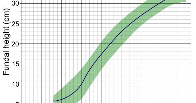 Vad har höjden av en centimeter?