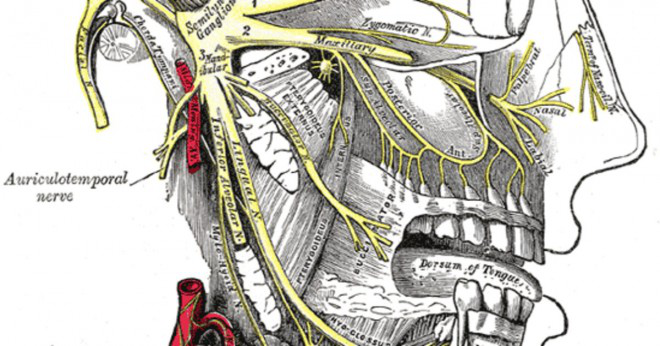 Vad skulle orsaka en svår halsont och öm gommen på endast en sida?