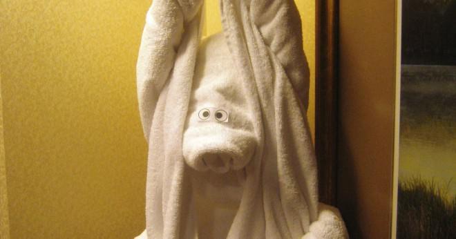 Hur du installerar en badrum Handdukshängare?