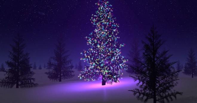 Vilka länder firar annandag jul?